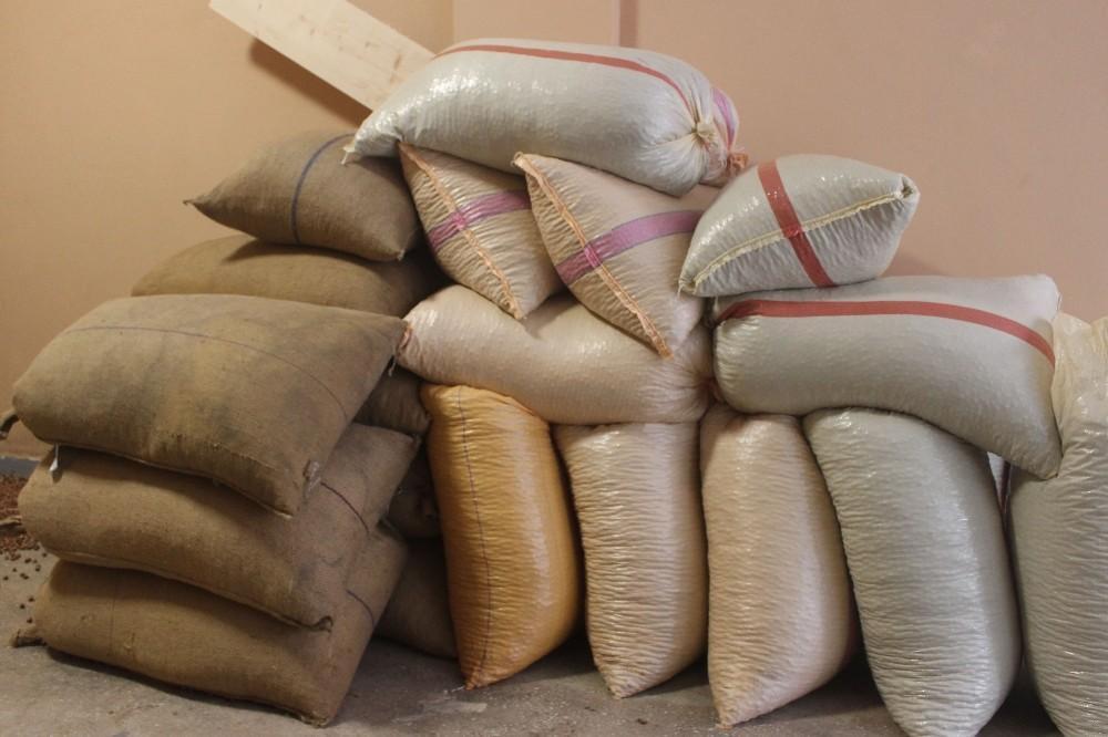 Giresun'dan Eylül ayı içerisinde 33 bin 471 ton fındık ihraç edildi